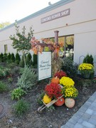 Concord Flower Shop - Ceremony Sites, Florists - 135 Commonwealth Ave, Concord, Massachusetts, 01742