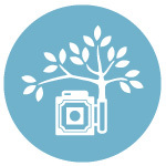 The Collective Photographers - Photographers - 1225 Pepper St , Suite A, San Luis Obispo, Ca, 93401, United States
