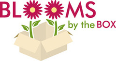 Blooms By The Box - Florist - 775 Mountain Blvd, Watchung, New Jersey, 07069, US