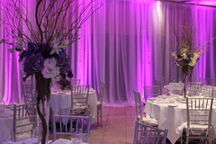 Waterlemon Events - Decorations, Rentals, Photo Booths - 600 West Cummings Park, Suite 1750, Woburn, MA, 01801, USA