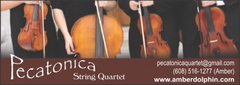 Pecatonica String Quartet - Ceremony Musicians, Bands/Live Entertainment - 626 Shearwater St., Madison, WI, 53714