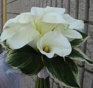 CLASSY FLOWERS - Florists - 20 Staffern Dr., Unit 17,, VAUGHAN, ONTARIO, L4K2Z7, CANADA