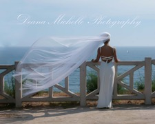 Deana Michelle Photography - Photographer - 2525 Stow St,  -, Simi Valley, Ca, 93063, usa