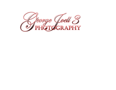 George P. Joell 3 Photography - Photographers, Coordinators/Planners - 6885 Cliffdale Rd, Ste 201, Fayetteville, NC, 28314, USA