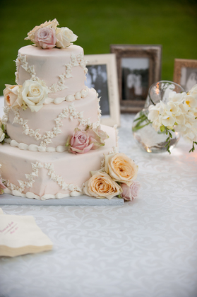 Cakes and Desserts - Dianna and Joseph's Wedding in Jackson, MS, USA