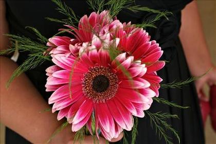 The Bridesmaid' Bouquet, Gerbera Daisies with Tree Fern by Petal Elegance Flowers and Decor - Courtney and Clay's Wedding in Olympia, WA, USA