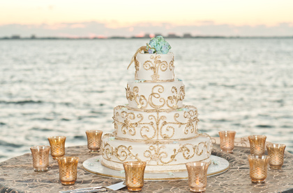Cakes and Desserts - Morgan and Morgan's Wedding in Sarasota, FL, USA