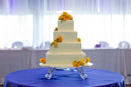 Cakes by Jan Cakes and Desserts - Minneapoli Wedding In June in Minneapolis, MN, USA