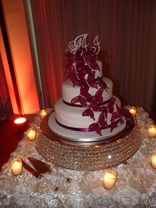 I personally blinged out the butterflies on my wedding cake.  Wedding Cake - Malani  and Jose 's Wedding in Miami Beach, FL, USA
