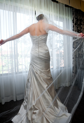 back view dress, long veil The Wedding Dress - San Diego Wedding In October in San Diego, CA, USA