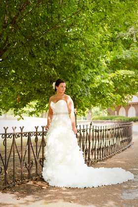 The Wedding Dress - Elizabeth and Steven's Wedding in St Louis, MO, USA