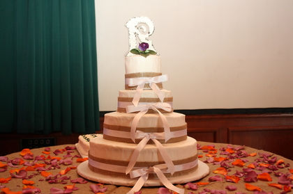 Cake by Gwen Nunley Mackinaw IL Cakes and Desserts - Robin and Jason's Wedding in Peoria, IL, USA
