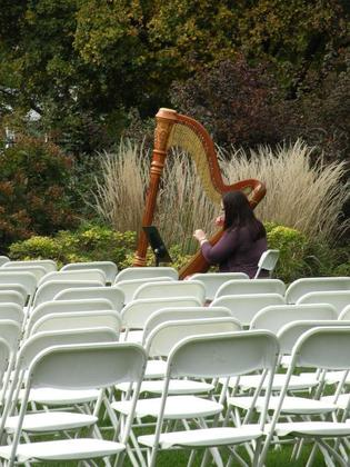 Devon Haupt our harpist! The Ceremony - Robin and Jason's Wedding in Peoria, IL, USA