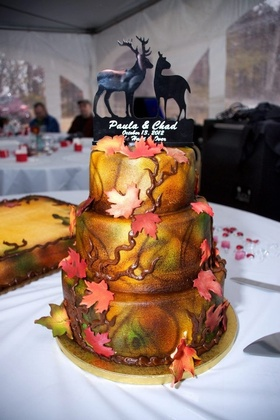 Cakes and Desserts - Paula and Chad's Wedding in North Branch, Minnesota