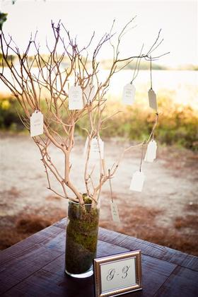 We displayed the escort cards on the guest table using manzanita branches and clear vases filled with moss. I made the escort cards using printable tags from Paper Presentation tied with jute twine. Flowers and Decor - Kathryn and Andrew's Wedding in Charleston, SC, USA