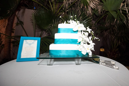 Cakes and Desserts - Kristen and Erik's Wedding in San Juan, Puerto Rico