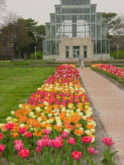 Jewel Box - Ceremony Sites, Attractions/Entertainment - 5600 Clayton Ave, St Louis, MO, United States