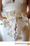 Fleurish - Florists - 26524 Fisher Drive, P.O. Box 221401, Carmel, CA, 93922-1401, USA