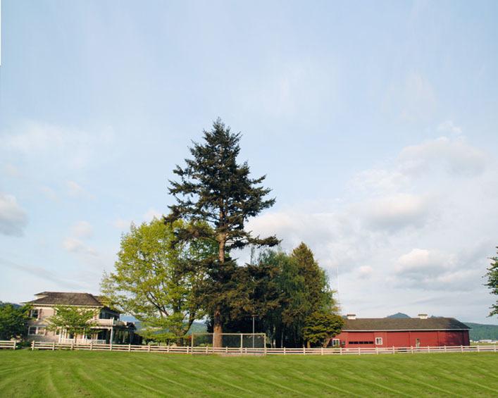 Maplehurst Farms - Reception Sites - 18495 Dike Rd, Mt Vernon, WA, 98273