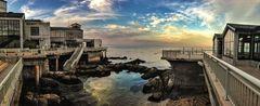 Monterey Bay Aquarium - Attractions/Entertainment, Attractions/Entertainment - 886 Cannery Row, Monterey , California, 93940-1023, USA