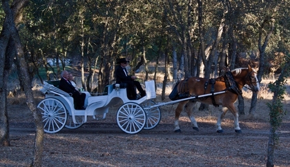 Dodasa Ranch Weddings and Events - Ceremony Sites, Reception Sites, Ceremony & Reception, Barbecues/Picnics - P O Box 806, 5059 Carol Lane, Burson, California, 95225