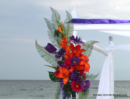 -  - Destin Beach Brides