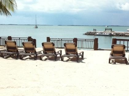 -  - Dream Bay Resort