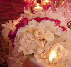 M&Tweddingplanning143 - Coordinators/Planners, Ceremony & Reception - Hampton, VA, 23666, USA