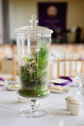 Terrarium Centerpiece - Flowers and Decor - Land Escapes Design Inc.