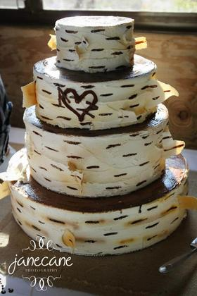 wedding cakes duluth mn cake occasions wedding venues amp vendors wedding mapper 24230