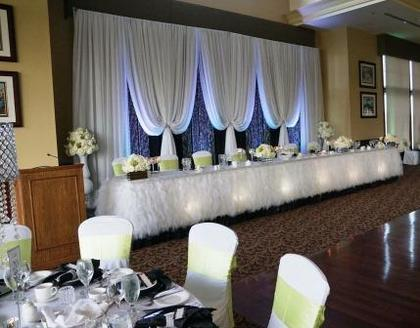 Ashley Vertical Drape Backdrop with Crystals, Ribbon Chiffon Table Decor with Silver Rhinestone Jewelled Band - Flowers and Decor - Annie Lane Events & Decor