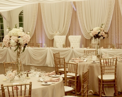 Beautiful Blush & Lace Backdrop with Crystals - Flowers and Decor - Annie Lane Events & Decor