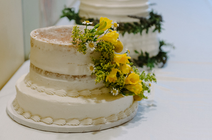 Cakes and Desserts - Alexandra  and Alexander's Wedding in Sioux Falls, SD, USA