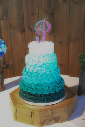 Cakes and Desserts - Our Wedding in Nappanee, IN, USA